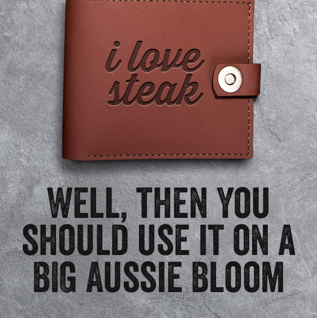 You should use it on a BIG Aussie Bloom!