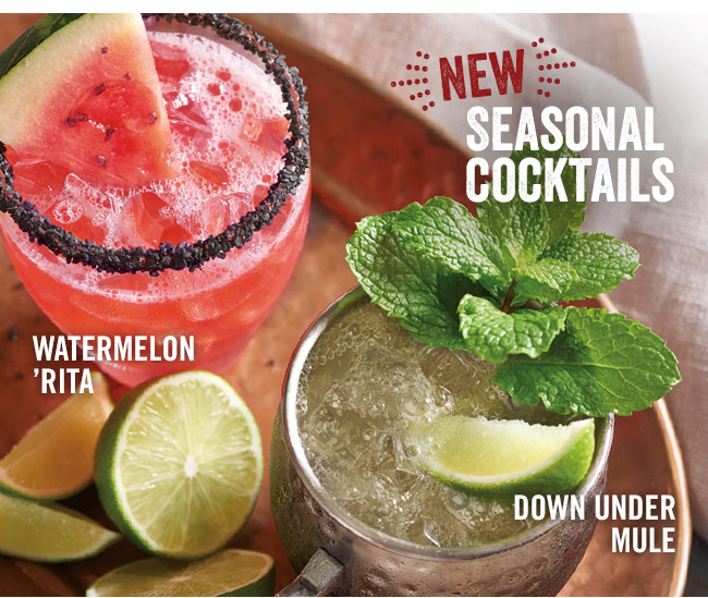 New! Seasonal Cocktails - Watermelon 'Rita and Down Under Mule